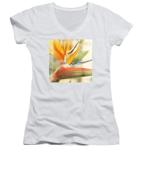 Bird Of Paradise - Strelitzea Reginae - Tropical Flowers Of Hawaii Women's V-Neck T-Shirt