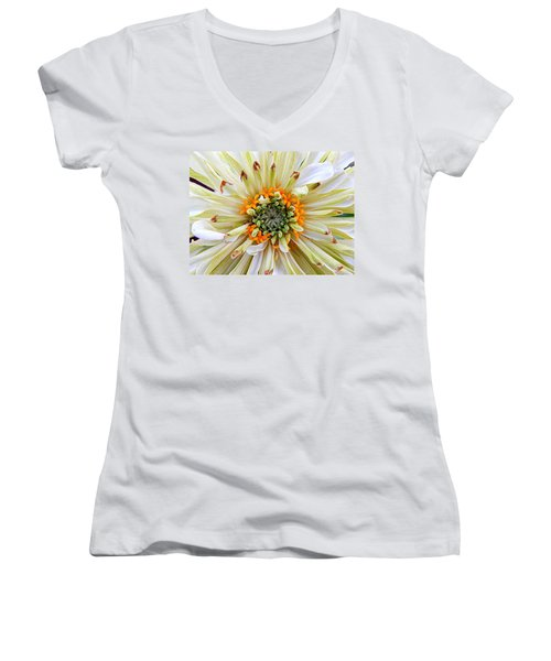 Chrysanthemum Fall In New Orleans Louisiana Women's V-Neck T-Shirt