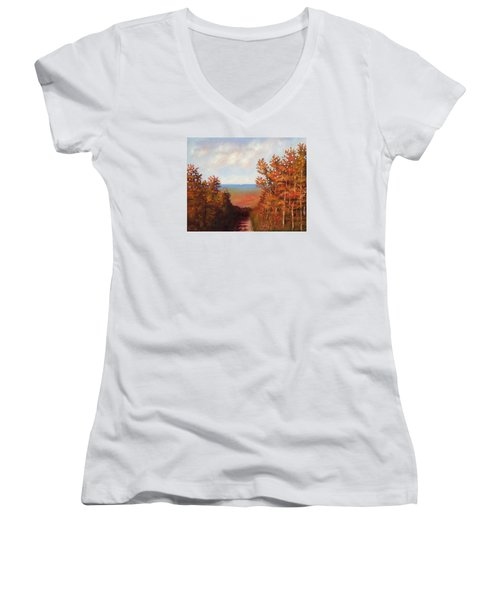 Mountain View Women's V-Neck T-Shirt (Junior Cut) by Jason Williamson