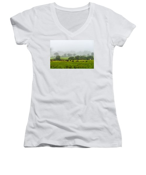 Cows At Rest Women's V-Neck (Athletic Fit)