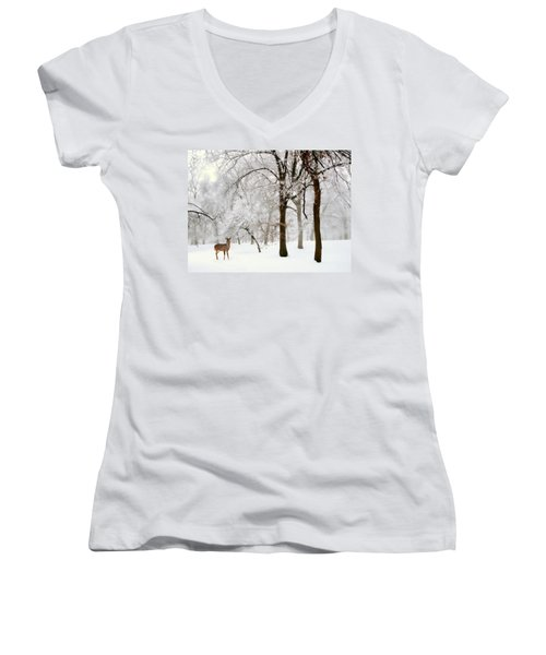 Winter's Breath Women's V-Neck