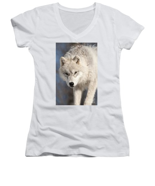 Arctic Wolf Pup Women's V-Neck (Athletic Fit)