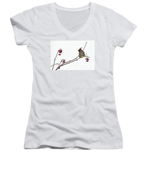 Bohemian Waxwings Eating Rowan Berries Women's V-Neck T-Shirt