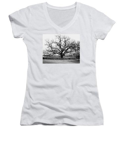 A Bare Oak Tree Women's V-Neck