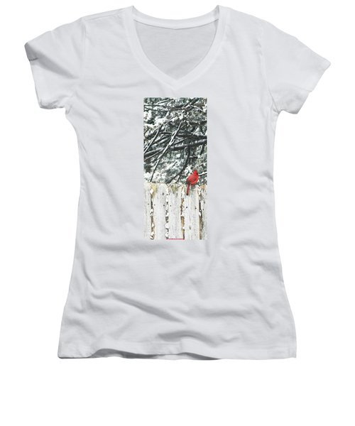 A Christmas Cardinal Women's V-Neck T-Shirt