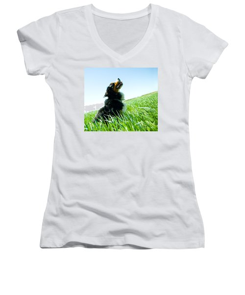 A Cute Dog On The Field Women's V-Neck T-Shirt