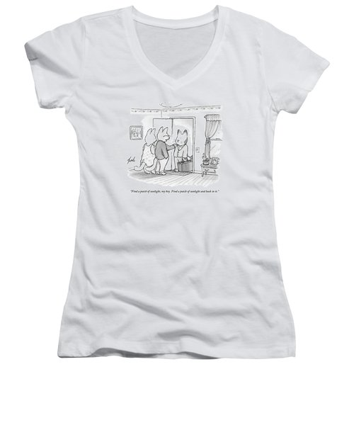 A Family Of Three Cats In A House Women's V-Neck