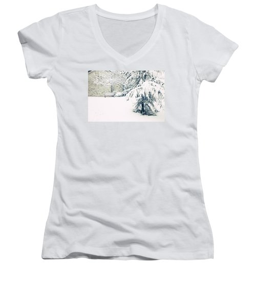 A Gentle Frosting Women's V-Neck (Athletic Fit)