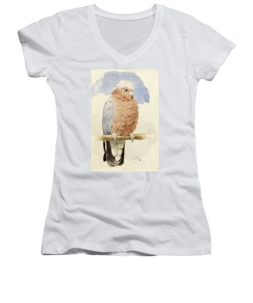 A Rose Breasted Cockatoo Women's V-Neck (Athletic Fit)