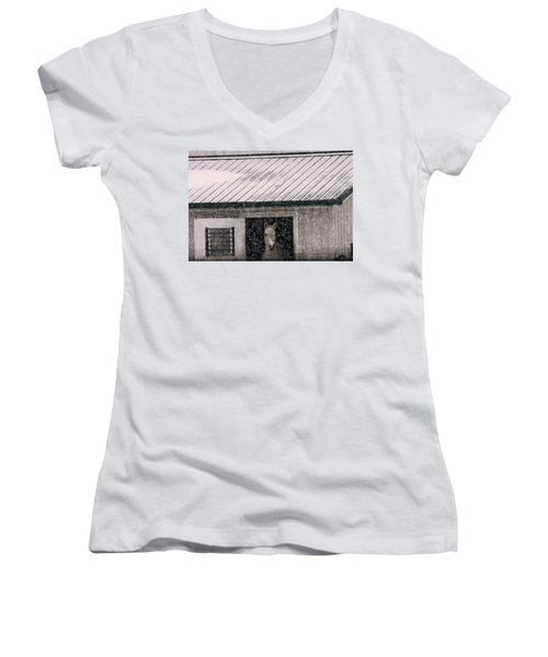A Snowfall At The Stable Women's V-Neck T-Shirt