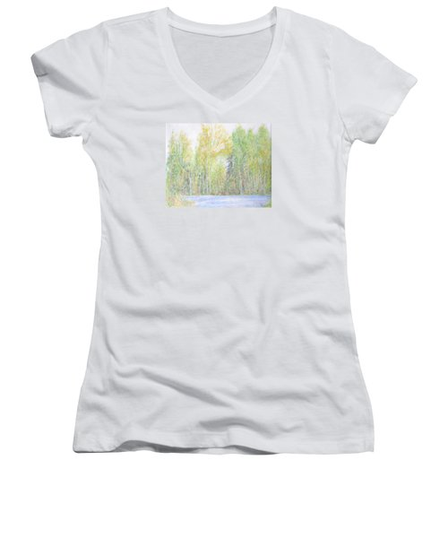 A Sunny Day Women's V-Neck (Athletic Fit)