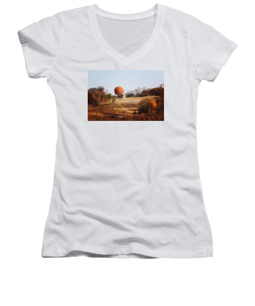A Walk In The Meadow Women's V-Neck