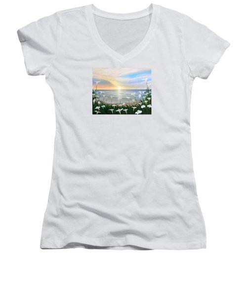 Alcatraces Women's V-Neck T-Shirt