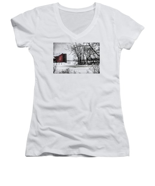 Alpine Barn Michigan Women's V-Neck T-Shirt