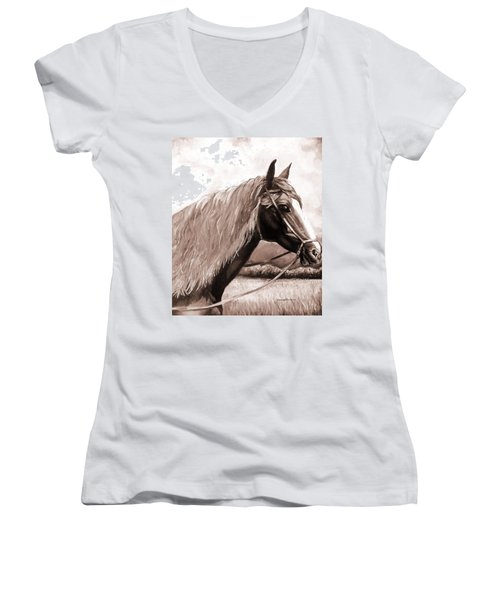 American Beauty Antique Women's V-Neck T-Shirt (Junior Cut) by Shana Rowe Jackson