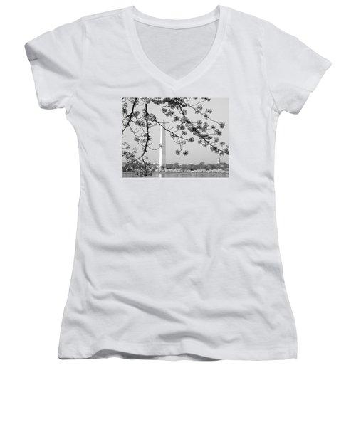Amongst The Cherry Blossoms Women's V-Neck T-Shirt