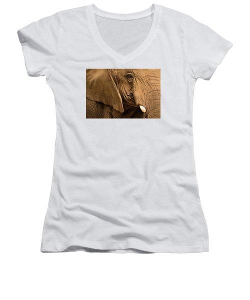 An Elephant's Eye Women's V-Neck