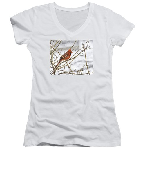 Another Snowy Day Women's V-Neck
