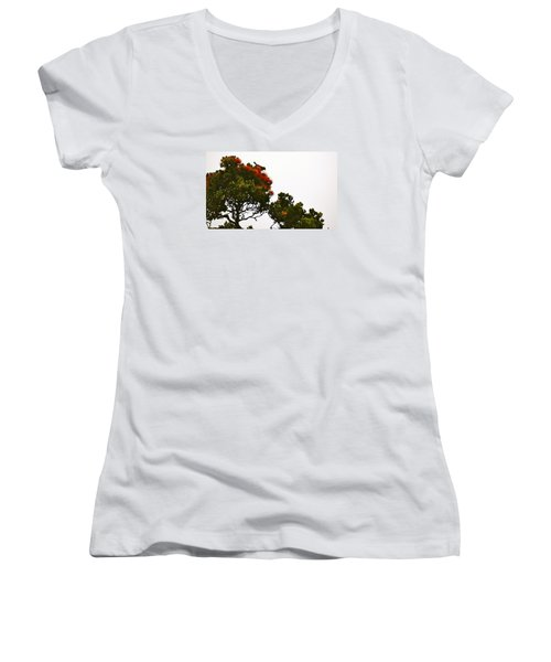 Apapane Atop An Orange Ohia Lehua Tree  Women's V-Neck T-Shirt (Junior Cut) by Lehua Pekelo-Stearns