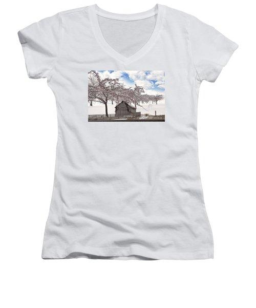 Apparition Women's V-Neck T-Shirt (Junior Cut) by Liane Wright