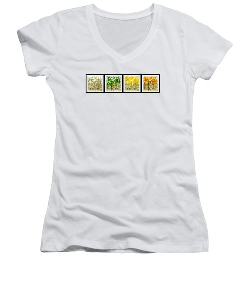 Aspen Colorado Abstract Horizontal 4 In 1 Collection Women's V-Neck