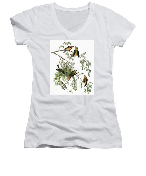 Audubon Crossbill Women's V-Neck T-Shirt