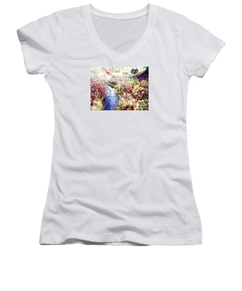 Women's V-Neck T-Shirt (Junior Cut) featuring the photograph Autumn Creek by Vanessa Palomino