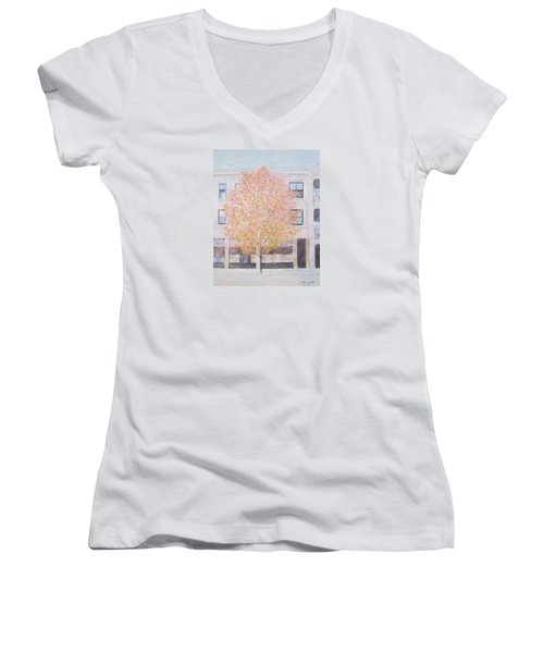 Autumn In Chicago Women's V-Neck (Athletic Fit)