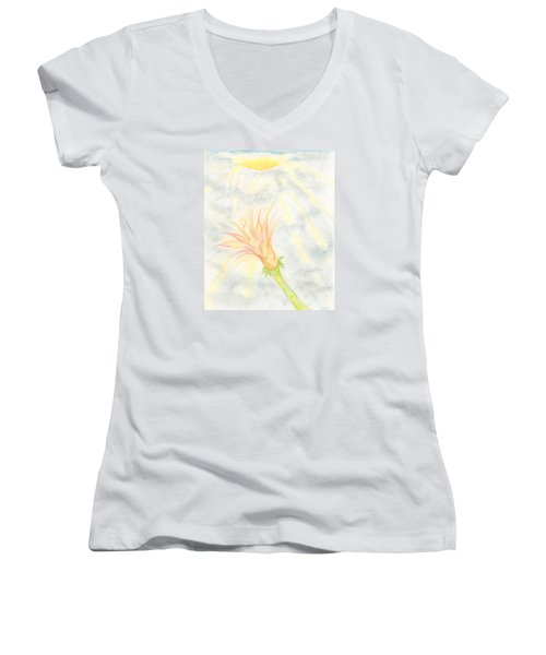 Awakening Women's V-Neck T-Shirt