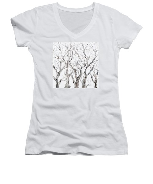 Bare Branches Women's V-Neck T-Shirt (Junior Cut) by Regina Valluzzi