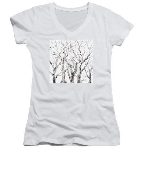 Bare Branches Women's V-Neck T-Shirt