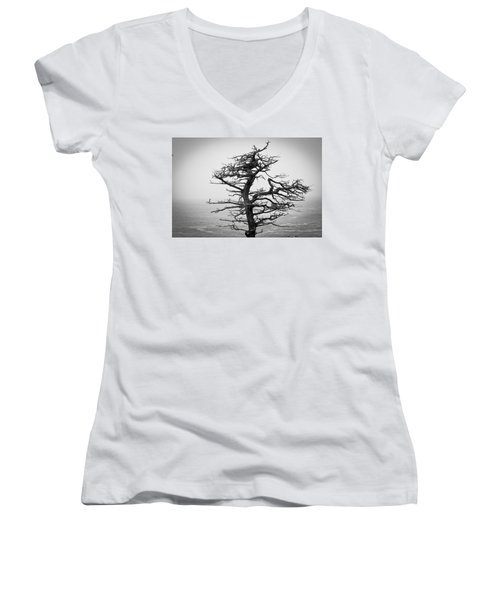 Bare Cypress Women's V-Neck T-Shirt (Junior Cut) by Melinda Ledsome
