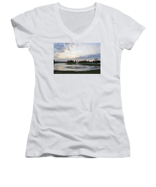 Beautiful Day Women's V-Neck T-Shirt (Junior Cut) by Verana Stark