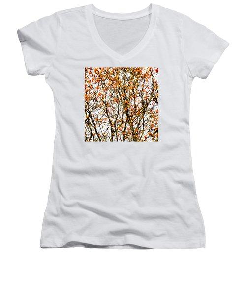 Beautiful Rowan 10 - Square Women's V-Neck T-Shirt (Junior Cut) by Alexander Senin