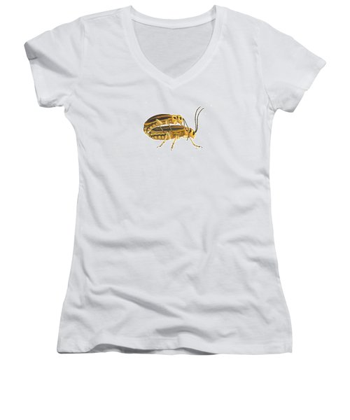 Chrysomelid Beetle Mating Pose Women's V-Neck T-Shirt (Junior Cut) by Cindy Hitchcock