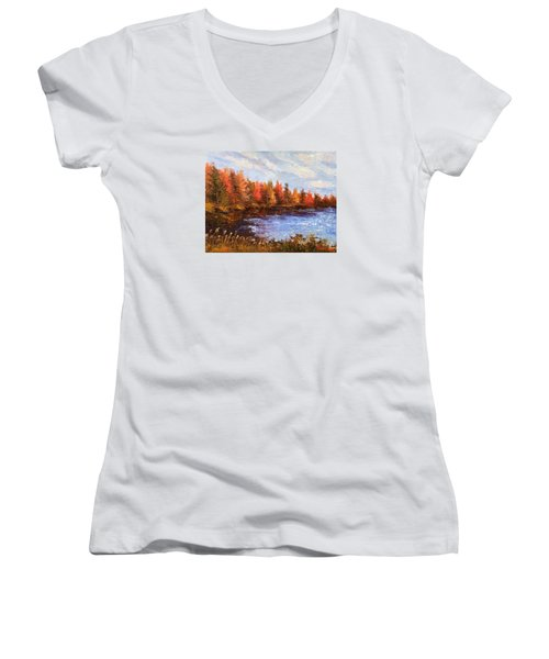 Birchwood Lake Women's V-Neck T-Shirt (Junior Cut) by Jason Williamson