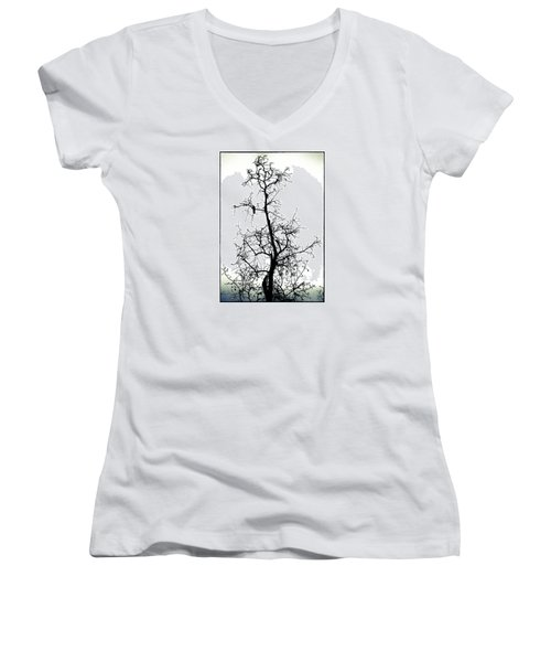 Women's V-Neck T-Shirt (Junior Cut) featuring the photograph Bird In The Branches by Caitlyn  Grasso