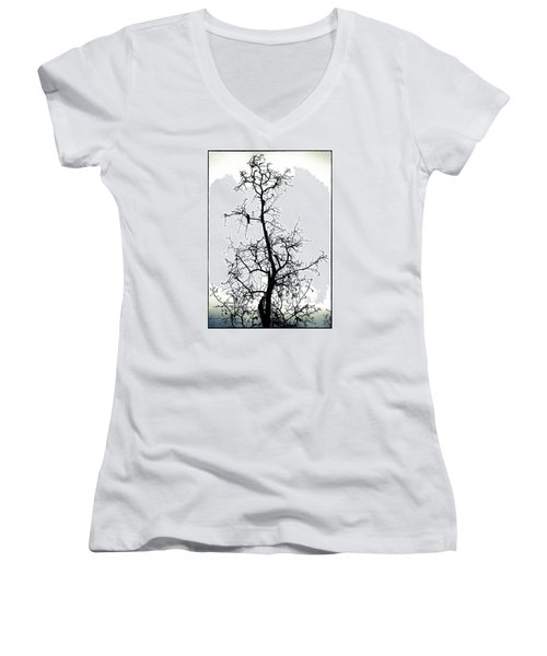 Bird In The Branches Women's V-Neck (Athletic Fit)