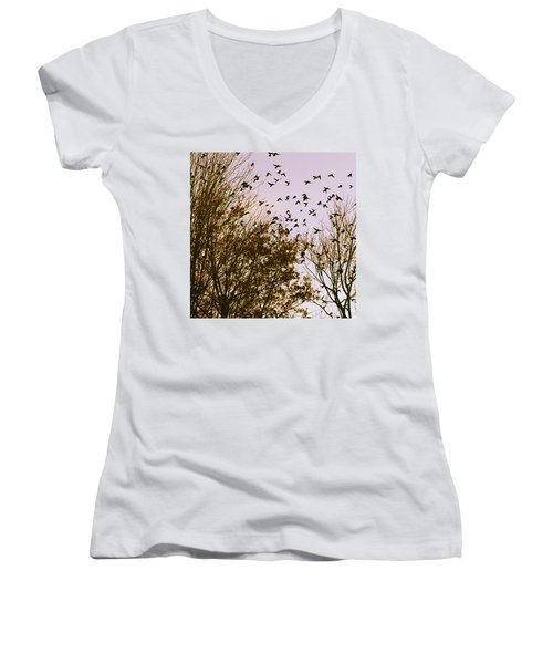 Women's V-Neck T-Shirt featuring the photograph Birds Of A Feather Flock Together by Thomasina Durkay