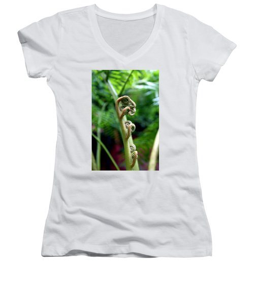 Birth Of A Fern Women's V-Neck T-Shirt (Junior Cut) by Debi Demetrion