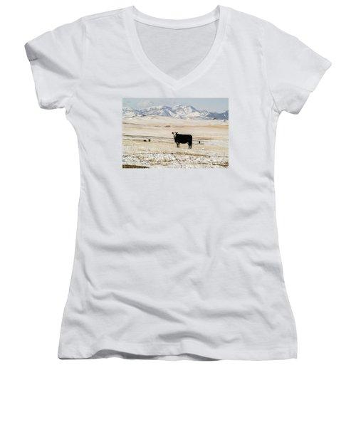 Women's V-Neck T-Shirt (Junior Cut) featuring the photograph Black Baldy Cows by Sue Smith