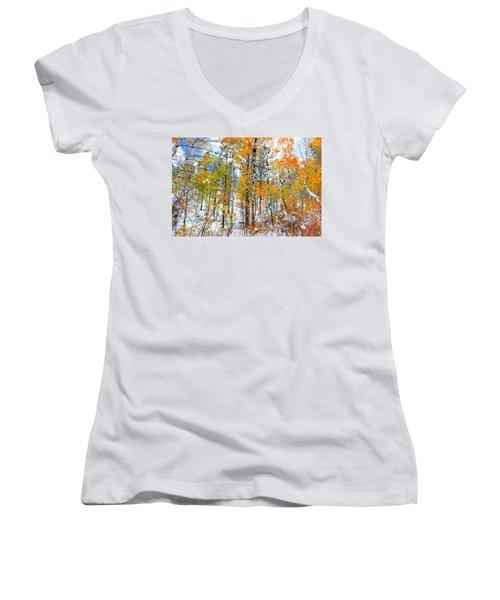 Black Hills Veil  Women's V-Neck T-Shirt (Junior Cut) by Clarice  Lakota