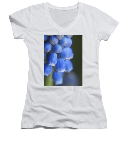 Blue Blossoms Women's V-Neck T-Shirt