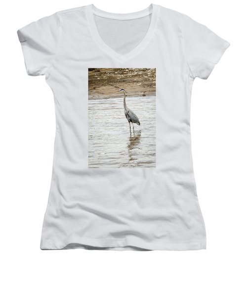 Blue Heron Women's V-Neck