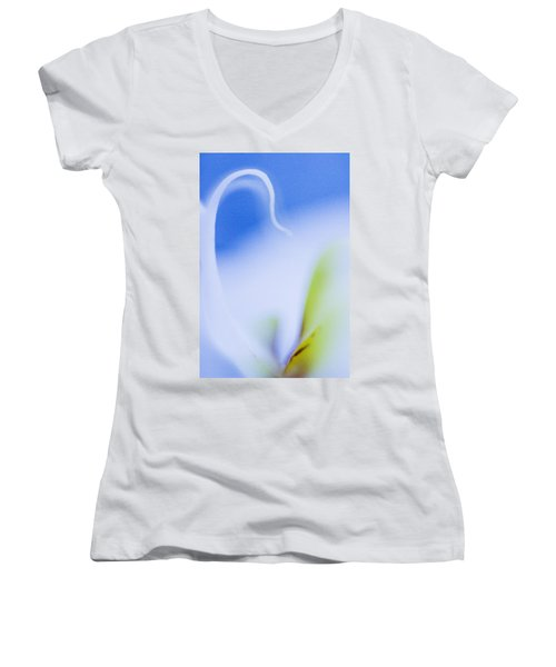 Blue Orchid Abstract Women's V-Neck T-Shirt (Junior Cut) by Bradley R Youngberg