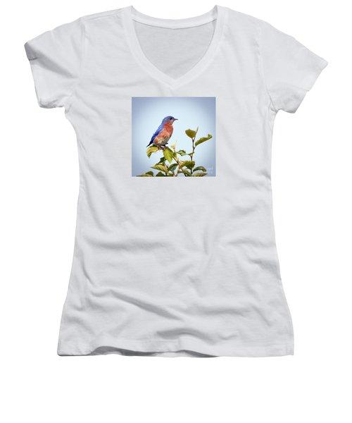 Women's V-Neck T-Shirt (Junior Cut) featuring the photograph Bluebird On Top by Kerri Farley