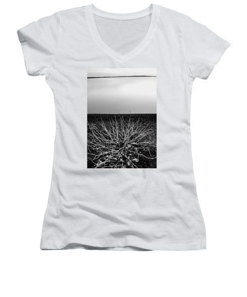 Branching Out Women's V-Neck T-Shirt (Junior Cut) by Brian Duram