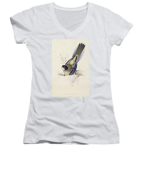 Browns Parakeet Women's V-Neck T-Shirt (Junior Cut) by Edward Lear