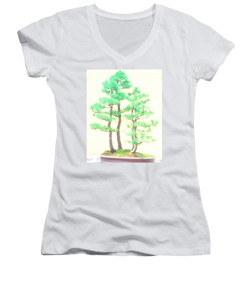 Caitlin Elm Bonsai Tree Women's V-Neck (Athletic Fit)