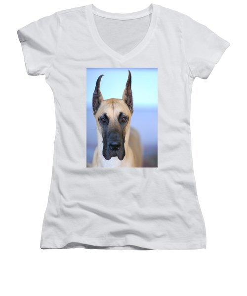 Women's V-Neck T-Shirt (Junior Cut) featuring the photograph Cappy by Lisa Phillips